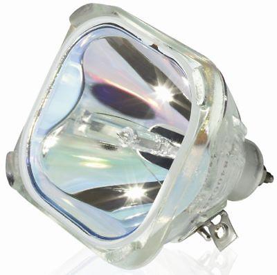 DLP Lamp